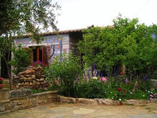Petrino Villas, Jasmine a stone-built, detached Villa in peaceful area - Kalamata vacation rentals