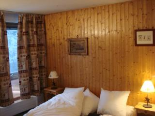 CHAMONIX Nice Self Catering Appartment - Chamonix vacation rentals