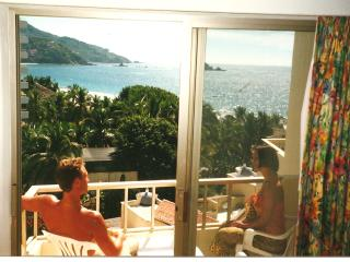 IXTAPA, MEXICO - Ixtapa vacation rentals