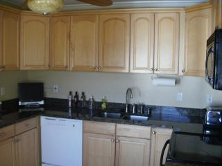 Beautiful 2/1 waterfront condo with boat dock - Punta Gorda vacation rentals