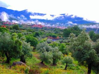 RURAL LODGE EXTREMADURA - design farm upto 4pers. - Aldeanueva De La Vera vacation rentals