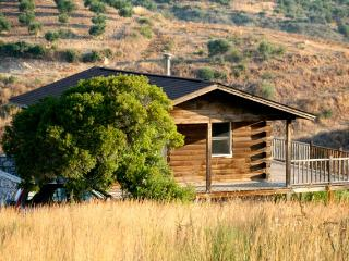 ROMANTIC,  ELEGANT AND HAND MADE LOG HOUSE - Peloponnese vacation rentals