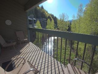 Enjoy this beautiful vacation condo along the San Miguel River in downtown Telluride. - Silverton vacation rentals