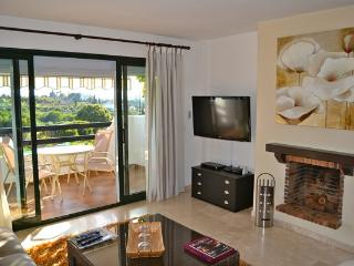 Apartment near Selwo Estepona - Marbella vacation rentals