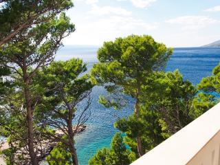Frontbeach Studio Apartment BRDRAZ-A3(2+2) - Brela - Makarska vacation rentals