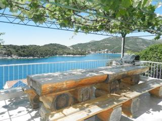 Apartment Francesca with shared pool-A4+1 - Zaton vacation rentals