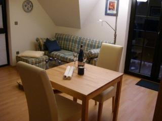 LLAG Luxury Vacation Apartment in Goslar - 538 sqft, upscale, quiet, central (# 4725) - Braunlage vacation rentals