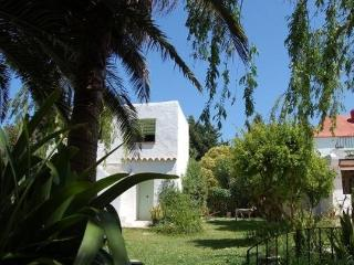 La Buganvilla - Charming Zahora lovely apartment - Chiclana de la Frontera vacation rentals