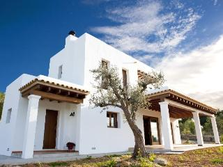LOVELY BEDROOM IN A BEAUTIFUL FINCA - Castilla La Mancha vacation rentals