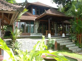 Beautiful 3 bedroom with pool in the heart of Ubud - Ubud vacation rentals