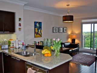 CENTRAL LUXURY CONDO WITH FREE PARKING - Toronto vacation rentals