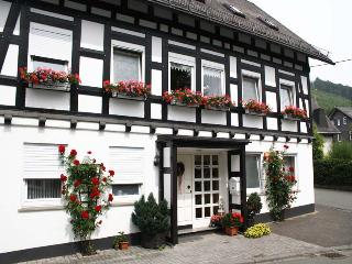 Cozy apartment between Winterberg and Willingen surrounded by the highest mountains of the Upper Sauerland - Bruchhausen vacation rentals