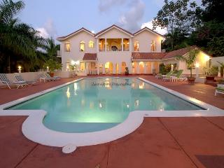BEACH CLUB! POOL! BUTLER! LARGE LUXURY!Summerhill - Jamaica vacation rentals