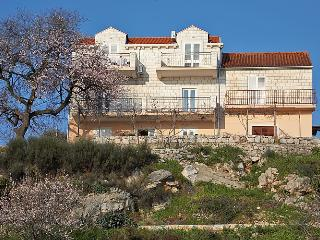 Apartment Bralovic with balcony and pool - A4+1 - Dubrovnik vacation rentals