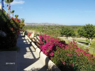 2 bdr, close to all shops and beach,  great view - San Jose Del Cabo vacation rentals