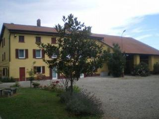Selfcatering farmhouse with stunning country views - Santa Maria della Versa vacation rentals