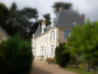 MANOIR DE LA VOUTE - Loir-et-Cher vacation rentals