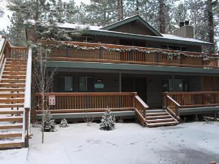Big Bear Lake Lower Unit Steps to Snow Summit - Big Bear Lake vacation rentals