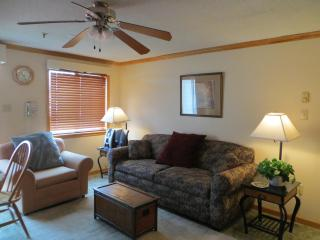 Mtn Lodge, Village Condo, Ski in/out, Convenient - Snowshoe vacation rentals