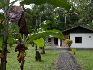 Caribbean Dream Cottages. - Manzanillo vacation rentals
