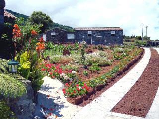 Adegas do Pico Three Bedroom-House - Pico vacation rentals