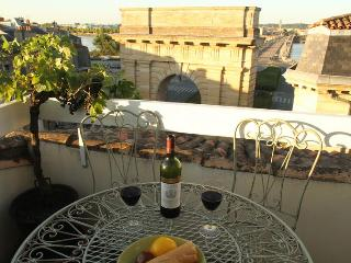 Stylish Apt, Spectacular View in Historic Center - Bordeaux vacation rentals