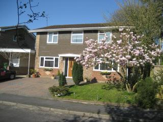 Oak Tree House  B&B, Liphook double rooms - Highcliffe vacation rentals