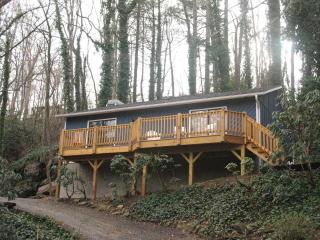 The Rock House / Driftwood Cabins - Asheville vacation rentals