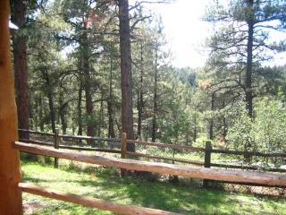 CAPITAN 498 - Pagosa Springs vacation rentals