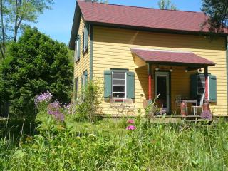 Sweet Charming Vintage Cottage In The Catskills - Hamden vacation rentals