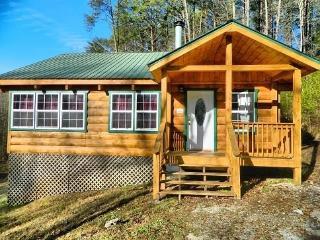 Highland Glade - Helen vacation rentals
