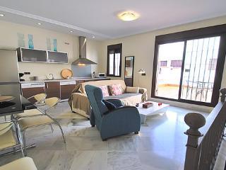 Amazing Duplex with Private Terrace - Ap Almeria - Seville vacation rentals