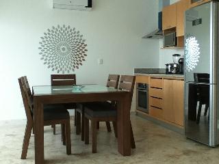 New Bamboo luxury Condo - Playa del Carmen vacation rentals