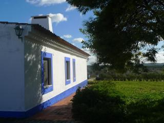Charming Family House in Alentejo, Portugal - Centro Region vacation rentals