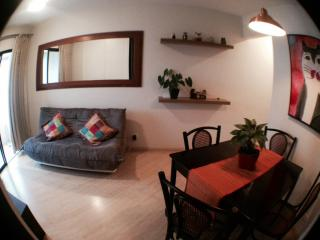 Lovely Santana suburb apart -  2 dorm - - Aruja vacation rentals