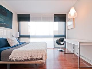 Duplex-Terrace Fuencarral/Gran Via - Madrid vacation rentals