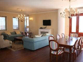 Views, comfort, luxury in Johannesburg penthouse! - Johannesburg vacation rentals