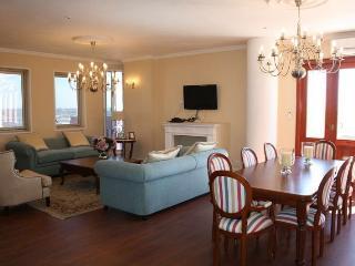 Views, comfort, luxury in Johannesburg penthouse! - Gauteng vacation rentals