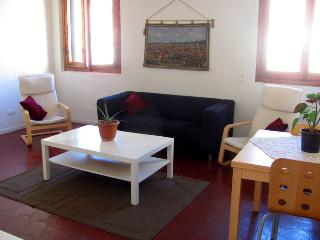 Large 4 bedroom Apartment in ideal location - Florence vacation rentals