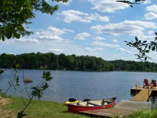 Beautiful Modern LAKEVIEW Cottage in Haliburton - Dorset vacation rentals