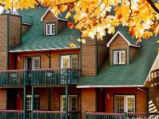 1 Bd Condo (sleeps 4) at the heart of best skiing! - Mont Tremblant vacation rentals
