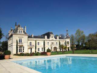 Chateau de Brillac région de Cognac - Foussignac vacation rentals