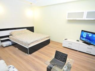 New luxury apartment in the Center of Chisinau - Chisinau vacation rentals