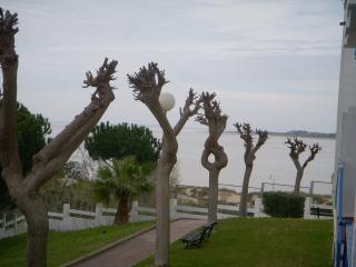 Sanlucar de Barrameda(Cadiz)50m to beach,2-4people - Sanlucar de Barrameda vacation rentals