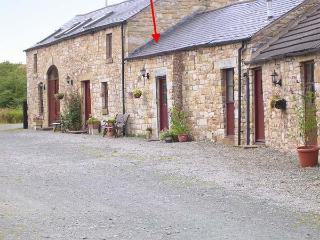 SWALLOW COTTAGE, horse stabling available, fantastic rural location, pet-friendly, cosy terrace cottage near Newcastleton, Ref.  - Newcastleton vacation rentals
