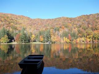 Peaceful Mountain Lake Cabin in the Smokies - Bethel vacation rentals
