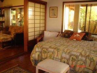 A great oceanview !! Quite and Peacefull with pool - Kailua-Kona vacation rentals