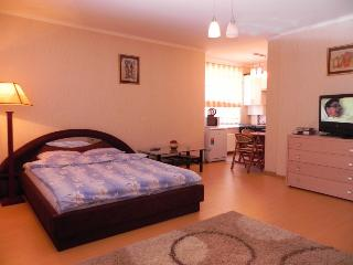 The apartment with best location - Chisinau vacation rentals