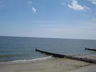 The Preserve - Ultimate Chesapeake Bay Experience! - Mollusk vacation rentals