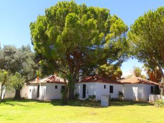 Peace & Quiet w/ beautiful gardens in Algarve - Porto vacation rentals
